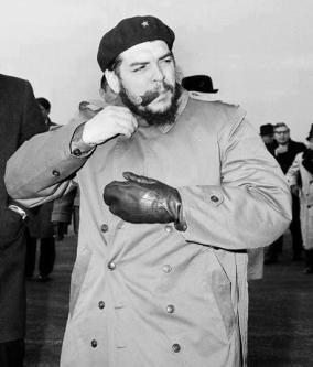 Che Guevara 8974